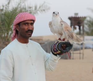 bird holding in dubai desert safari by gotripair