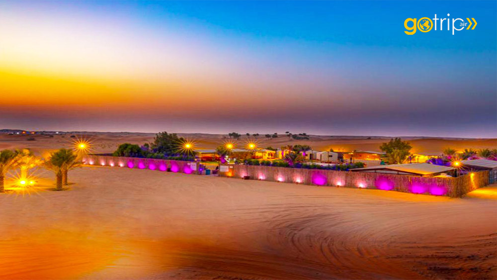 evening-desert-safari-dinner-dubai go trip tour
